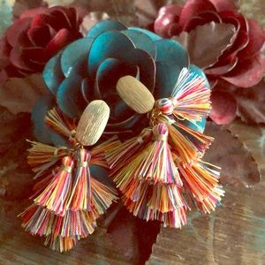 Fringe earrings. Multi color.